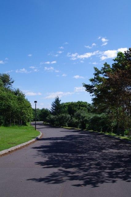 20100806モエレ沼公園6.jpg