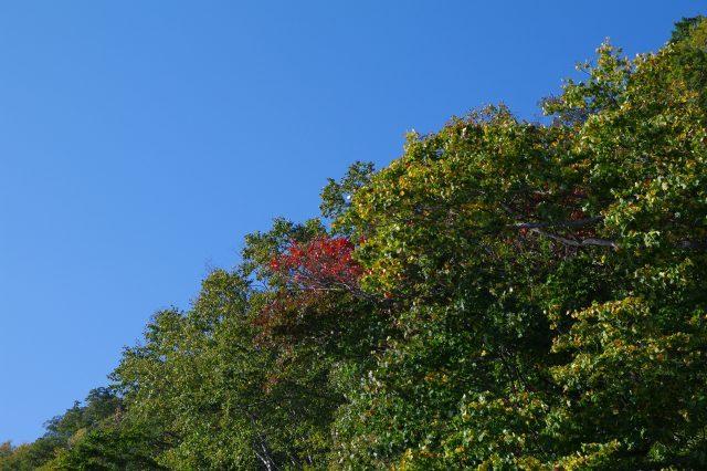2010年10月14日支笏湖10.jpg