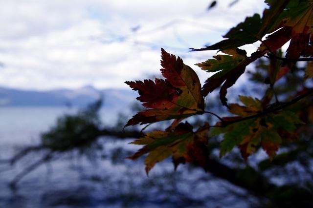 2010年10月14日支笏湖7.jpg
