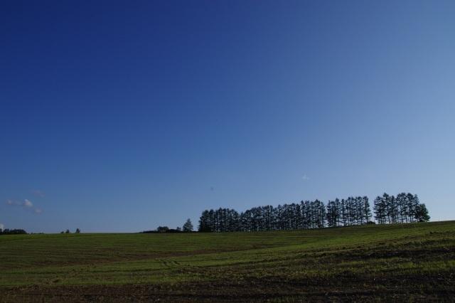 20110914美瑛15マイルドセブンの丘.jpg