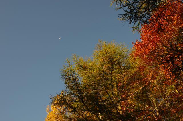 2011年10月20日3支笏湖道2.jpg