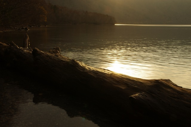2011年11月11日支笏湖11.jpg