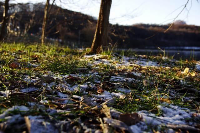 2011年12月2日洞爺湖4.jpg