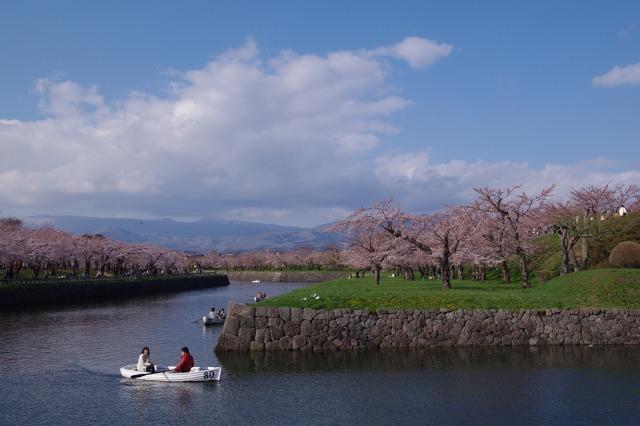 2011年5月5日五稜郭公園pm1.jpg