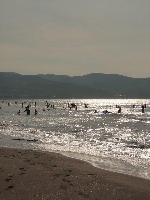 2011年8月13日海4.jpg