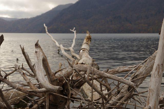 支笏湖2011年10月28日6.jpg