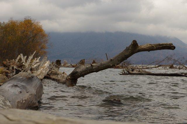 支笏湖2011年10月28日7.jpg