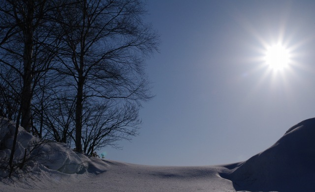 美瑛2011年2月22日‐1.jpg