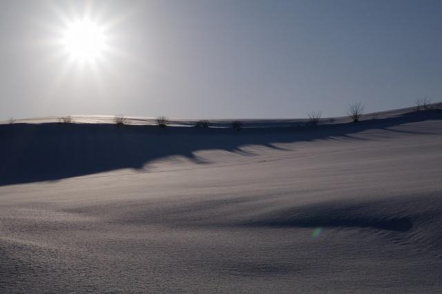 美瑛2011年2月22日‐7.jpg